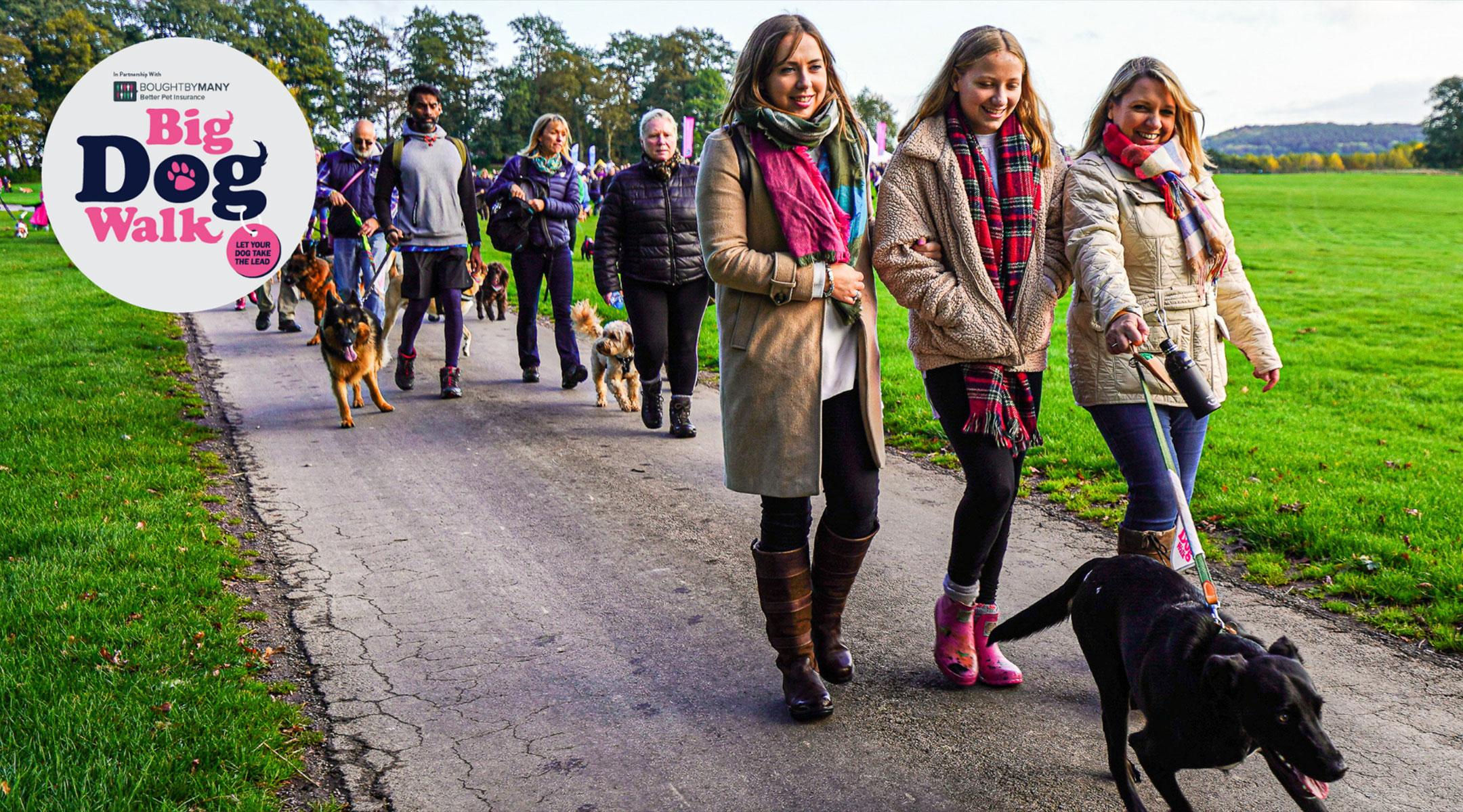 Big Dog Walk Glasgow