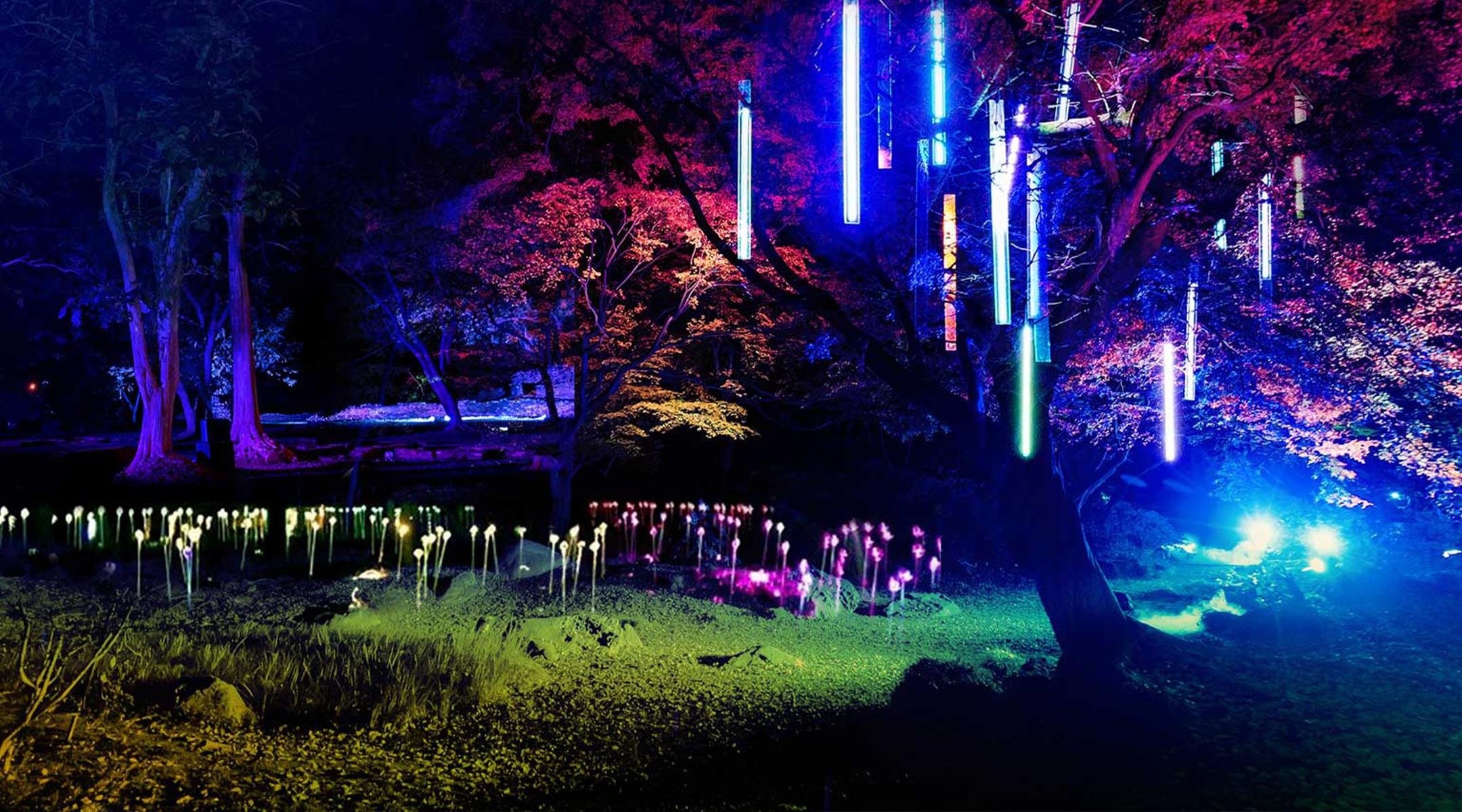 Light Up Wiston Estate