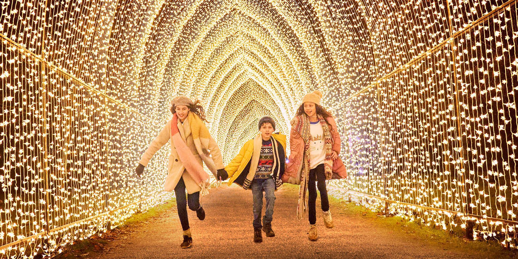 Christmas at Killerton